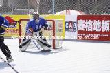 Azulejo en línea de la corte del hockey del torneo europeo, azulejo en línea del hockey (oro/plata/bronce del hockey)