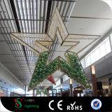 Grandes lumières s'arrêtantes d'étoile de Noël commercial fait sur commande pour la décoration de centre commercial