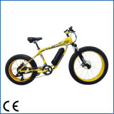 Model新しいMountain Electric Sport Bike 250W Fat Tire (OKM-687)