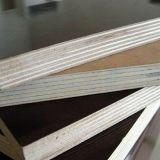 Mooie Shuttering van het Triplex van het Bamboe van de Oppervlakte van het Patroon Vlotte
