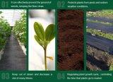 景色ファブリックプラスチック地被植物かWeedのマットの地被植物