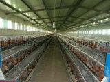 Клетка оборудования фермы цыпленка машинного оборудования фермы для цыпленка слоя