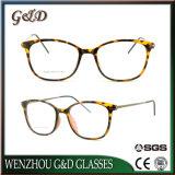 Het recentste Optische Frame van het Oogglas Eyewear van Ultem van het Ontwerp Plastic met de Tempel van het Aluminium E028