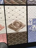 Керамические застекленные плитки стены пола Inkjet