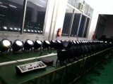 100W LED Warm & White Color COB Light per Surface Effect (HL-026)