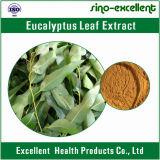 Выдержка листьев евкалипта 100% естественная
