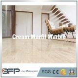 크림 Marfil - 벽을%s 가져온 크림 색깔 대리석 지면 도와 또는 마루 또는 거주 또는 프로젝트