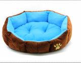 Doux superbe de modèle simple et lit coloré par Muti de chien d'animal familier
