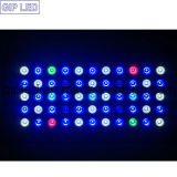 GIP 165W 120W DIY LED Aquarium Lights para Coral Reef