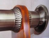 中央ヨーロッパ様式は引き締められた方法螺旋階段である