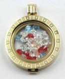 Locket fait sur commande de mémoire avec la pièce de monnaie en verre et les petits éléments à l'intérieur