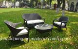Mobilia esterna del rattan della mobilia del giardino