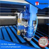 Tagliatrice del laser di trionfo 260W per ferro