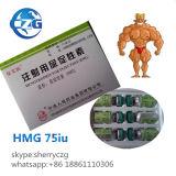 de Steroïden 75iu Vloeibare HMG van de Groei van de Spier 99%Purity Bodybuilding