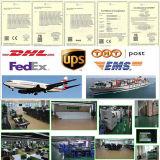 Cámara a prueba de vandalismo del IP del CCTV IP66 del Ipc Onvif H. 265 (KIP-RK20)