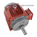 Электрического двигателя напряжения тока насоса Китая мотор Rpm/известного низкий электрический/электромотор