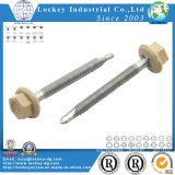 Ss304 Hex Washer Head Self Drilling Screw mit Rubber Washer