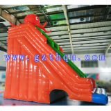 Octopus Inflável Water Slides / Giant Inflatable Water Slide / Inflatable Slide with Pool