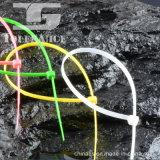 Hitzebeständiger Selbst, der Nylonkabelbinder mit PA66 sperrt