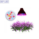 12W 24W E27 LED Grow Lights per Hydroponic Greenhouse