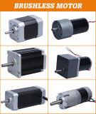24V 36V 48V Gleichstrom-elektrischer schwanzloser Motor
