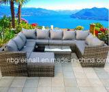 Rattan ao ar livre da combinação/mobília de vime do jardim do lazer do sofá