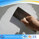 Нутряная замазка стены Skimcoat (белый основанный цемент)