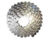 de 1 pulgada cerca. asta del anillo 120-Inch, acero inoxidable 304, 120 clavos/bobina, 3600/7200 por el cartón, clavos del material para techos de la bobina