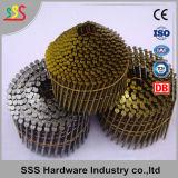 중국 제조자 고품질을%s 가진 철사에 의하여 대조되는 코일 못 깔판 못
