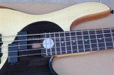 Guitare basse électrique de la musique 5-String de Hanhai avec la configuration de Taiji