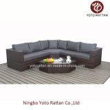 Outdoor (1203년)를 위한 브라운 Wicker New Sofa Set