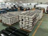 Tipo livre bateria do AGM da manutenção profunda do ciclo 12V 100ah do UPS