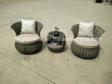 PE Rattan Wicker FurnitureかHotel Furniture/Outdoorの庭Furniture (BP-232R)