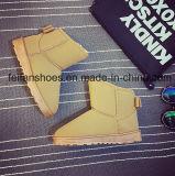 Снежок женщин обуви Boots ботинки зимы замши теплые