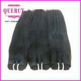 도매 Double Drawn 8A Grade High Quality 브라질 Straight Human Hair Extensions
