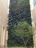 녹색 벽 구 Wall05182927의 고품질 인공적인 플랜트 그리고 꽃