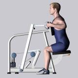 De Apparatuur van de geschiktheid/de Apparatuur van de Gymnastiek voor Rij Steated (sm-D1016)