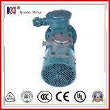 Motor van de Omzetting van de frequentie de Explosiebestendige Elektrische