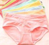 Señora transparente Sexy Panty de la ropa interior de las mujeres de la ropa interior femenina del OEM
