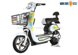 Pédale E-Bike / Scooter Electric Bicycle 500W / 800W