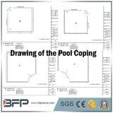 Pietra/granito naturali della Cina per fare fronte/raggruppamento della piscina che fa fronte