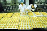 Forno de túnel, linha da produção alimentar, linha de produção do bolo do pão. Fábrica real desde 1979