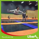 A fábrica de China fêz o parque dos Trampolines da ginástica