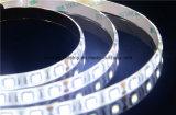 Luz de tira flexible del CRI SMD 5050 aprobados del Ce altos