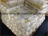 Bride faite à l'usine de sangle avec la norme En1492-1/bride d'oeil et de sangle d'oeil avec l'OIN de GV de la CE