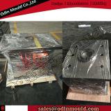 Plastic personalizado Parte Injection Mold para Europa Market