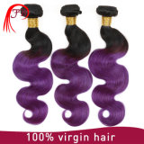 ブラジルのHuman Hair Ombre Two Tones 1b/Purple