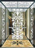 Sig. inciso specchio dell'elevatore dell'elevatore del passeggero & LMR Aksen Ty-K176