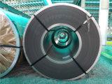 O uso comercial galvanizou a bobina de aço (o preço barato)