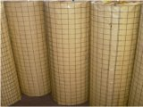 Wire saldato Mesh Galvanized 25mm*25mm Cina Professional Factory Supply
